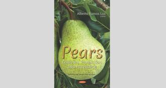Imagem com fundo cinza e, centralizada, a imagem da capa do livro