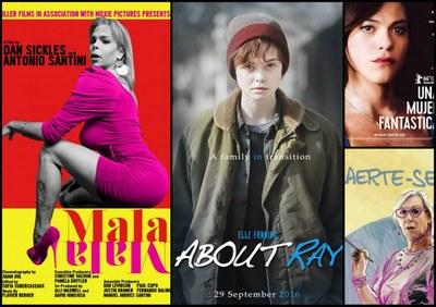 Cartaz com informações sobre filmes de mostra de cine com temática trans