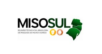 Imagem com a marca do 1º MISOSUL e um mapa do Sul do país