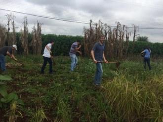 Na imagem cinco pessoas estão trabalhando no cultivo de experimentos que fazem parte da Vitrine Tecnológica de Agroecologia.